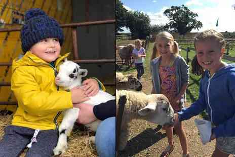 Boston Park Farm - Entry for two adults and two children including hot drinks for adults, a kids lunch box each and four bags of animal feed - Save 52%