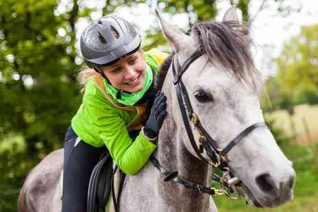 MacKenzies Equestrian Centre - One hour horse riding lesson for one person - Save 40%