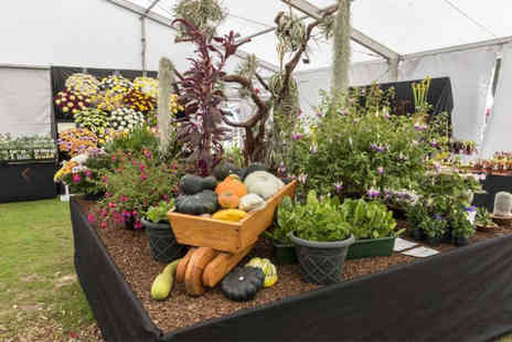 Chorley Flower Show - Adult day ticket, Adult weekend pass or family day ticket with Chorley Council - Save 47%