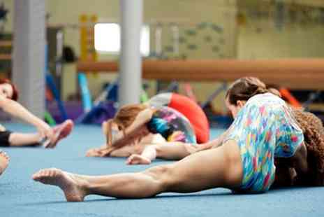 Europa Gymnastics Centre - 90 Minute Gymnastic Session for Up to Four - Save 57%