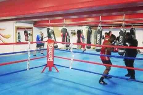 Croydon Boxing Gym - Four or Six Classes of Boxercise or Boxing for Adults - Save 42%