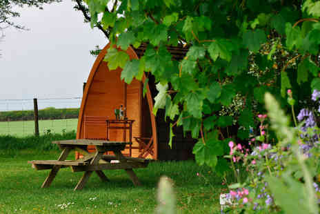 Virgin Experience Days - One Night Glamping Pod Break in Devon - Save 29%