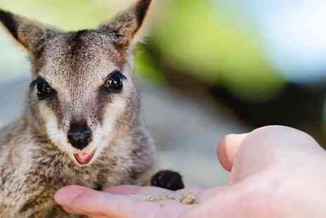 Ventura Wildlife Park - 30 minute Australian Outback Experience for 2 - Save 53%