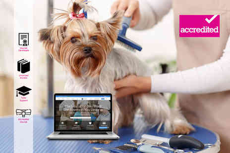 Harley Oxford - Online dog grooming diploma - Save 92%