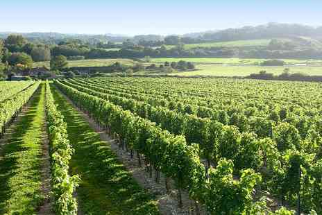 Cottonworth - Hampshire vineyard tour for 2 with tastings and lunch - Save 29%