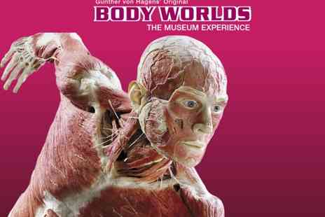 BWLON Experience - Ticket to Body Worlds London The Museum Experience, Piccadilly Circus see the phenomenal exhibition - Save 0%