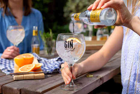 The Gin To My Tonic - One ticket to The Gin to My Tonic Festival - Save 33%