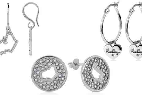 Groupon Goods Global GmbH - Radley Sterling Silver Earrings - Save 0%