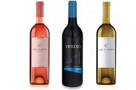 MGB Lifestyles - 12 Bottles of Cal Y Canto & Virtuoso Wines Choose from Red, White and Rose - Save 66%