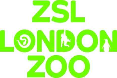 OMGhotels - ZSL London Zoo Entry and 24hr Hop On Hop Off Thames River Cruise Pass - Save 0%