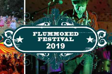 Flummoxed Festival - Escape to Family Festival Fun this Summer - Save 20%