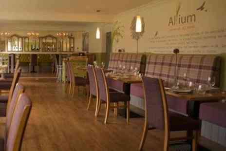 The Allium Bar & Grill - Pizza with Glass of Wine Each for Two - Save 58%
