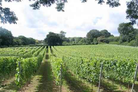 English Oak Vineyard - Vineyard Tour with Wine Tasting for One, Two or Four - Save 38%