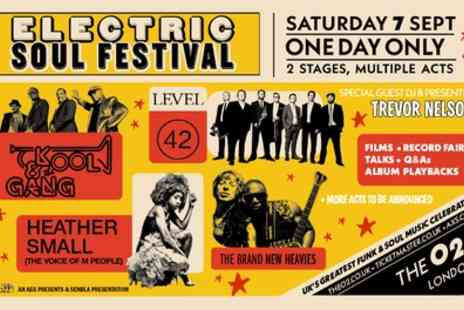 Electric Soul Festival - One seated ticket on 7th September - Save 39%