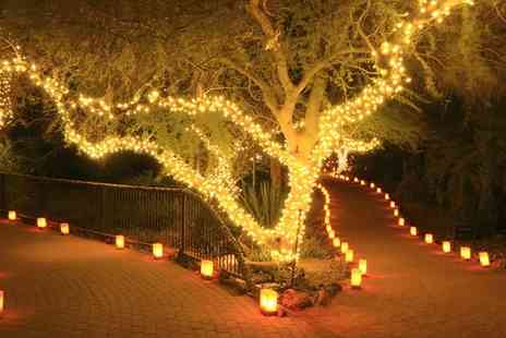 Groupon Goods Global GmbH - Four Strings of 50, 100 or 200 Led Solar Powered Fairy Lights - Save 0%