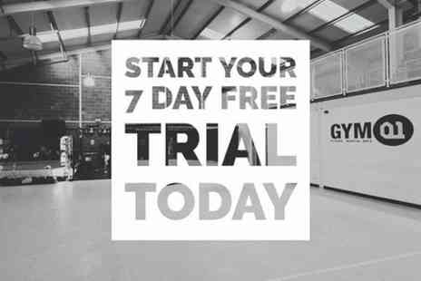 Gym01 Fitness and Martial Arts - 7 Day Free Trial - Save 0%