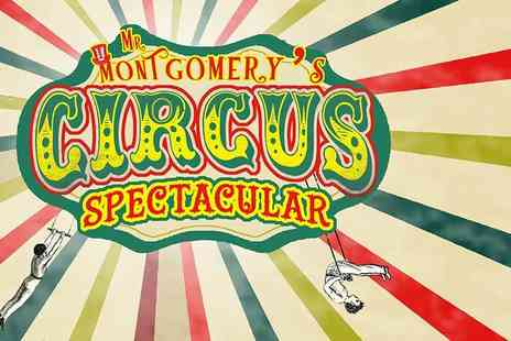 Yeadon Town Hall - Family ticket for two adults and two children to Mr Montgomerys Circus Spectacular - Save 41%