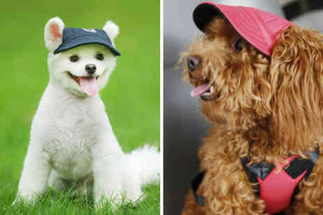 Secret Storz - Dog baseball cap choose from five colours and four sizes - Save 72%