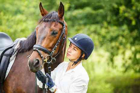 Croft Riding Centre - Private horse riding lesson for one - Save 59%