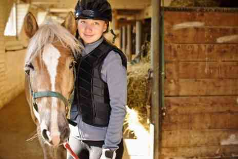 Grenoside Equestrian Center - Five Sessions of Horse Riding - Save 53%