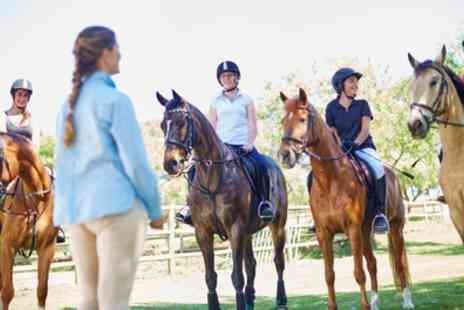 Collacott Riding School - One Hour Group Horse Riding Lesson for One or Two - Save 0%