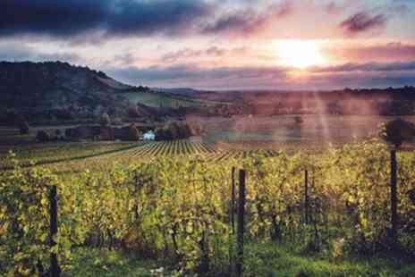 Denbies Wine Estate - Wine and Food Tasting Experience for Up to Four - Save 47%