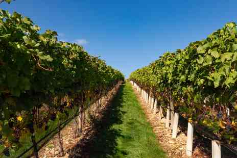 Woodchester Valley Vineyard - Cotswolds vineyard tour and tasting for 2 - Save 37%