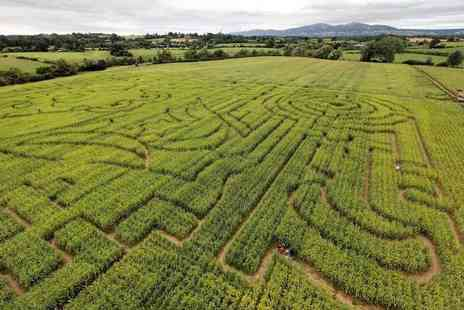 The Great Worcester Maize Maze - Childs ticket to The Great Worcester Maize Maze - Save 33%