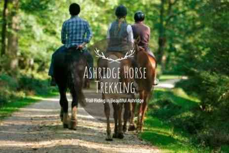 Janette Andrew - Horse Riding Near London - Save 0%