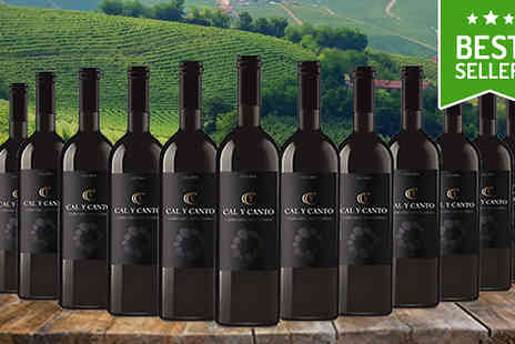 MGB Lifestyles - 12 Bottles of Award Winning Cal Y Canto Castilla Red Wine - Save 66%