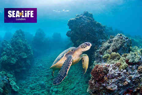The Scottish SEA LIFE Sanctuary - Childs ticket to Deep Ocean Tales at Sea Life London including all day entry to the aquarium an hour before the public - Save 20%