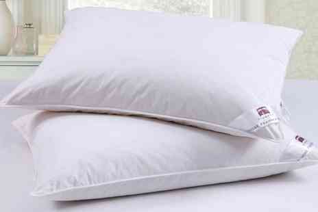 Groupon Goods Global GmbH - Two or Four Goose Feather and Down Pillows - Save 0%