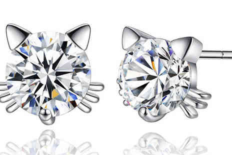 Your Ideal Gift - Crystal Cat Whisker Stud Earrings - Save 92%