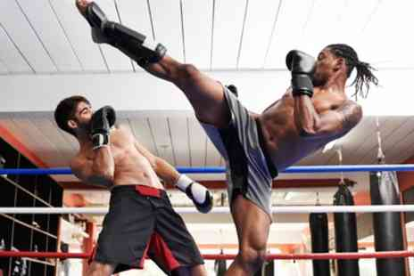 Elemental Kickboxing Academy - One or Three Month Access to Kickboxing Classes - Save 73%