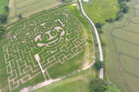 Cawthorne Maize Maze - Maize maze entry for one child - Save 42%