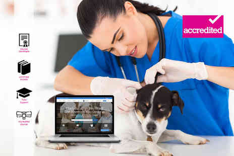 Harley Oxford - Online veterinary nursing course - Save 92%