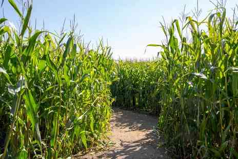 Boston Park Farm - Entry for two people to the Maize Maze - Save 50%