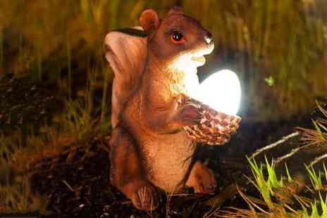 Garden Mile - solar powered squirrel Led light - Save 0%
