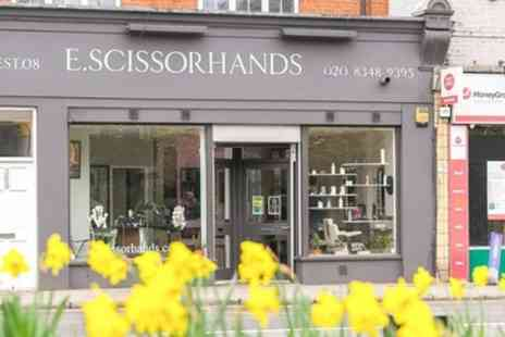 E Scissorhands - Wash, Cut, Blow Dry and Conditioning, Half or Full Head of Highlights - Save 69%