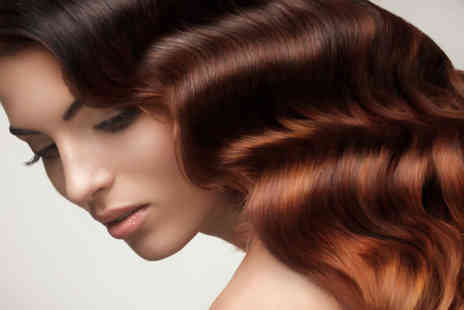 Headmasters - Brazilian Blowdry - Save 67%