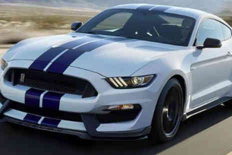 driveme - Mustang GT 500 driving experience - Save 63%
