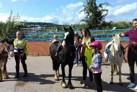 Severnwye Equestrian - Two hour pony, horse or llama trek with an animal experience for two people - Save 62%