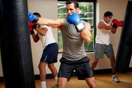 Wild Fighters Gym - Four or Six Boxing, MMA or Muay Thai Classes - Save 53%