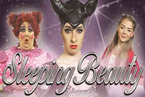 Sleeping Beauty Pantomime - One ticket from 7th To 24th December - Save 29%