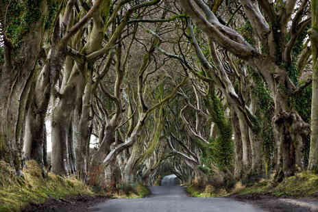 The Dark Hedges Estate - Overnight stay for two people with breakfast and a bottle of bubbly - Save 39%
