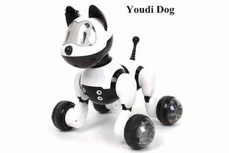 Secret Plums - Voice Control Robot Cat or Dog - Save 64%