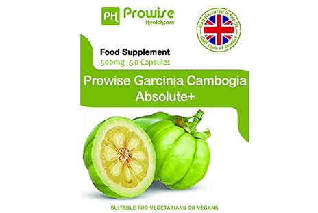 Prowise Healthcare - 1 Month Supply of Prowise Garcinia Cambogia Absolute Plus 500mg 90 Capsules - Save 74%