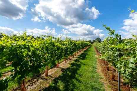 Kingscote Estate & Vineyard - Vineyard Tour with Tasting and Optional Lunch Platter for Two or Four - Save 43%