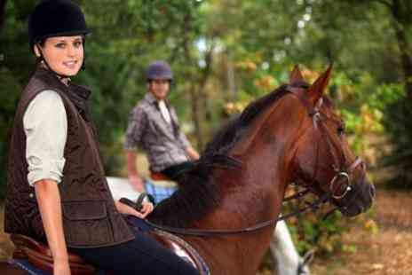 Edinburgh and Lasswade Riding Centre - One Hour Horse Riding or Hack - Save 47%
